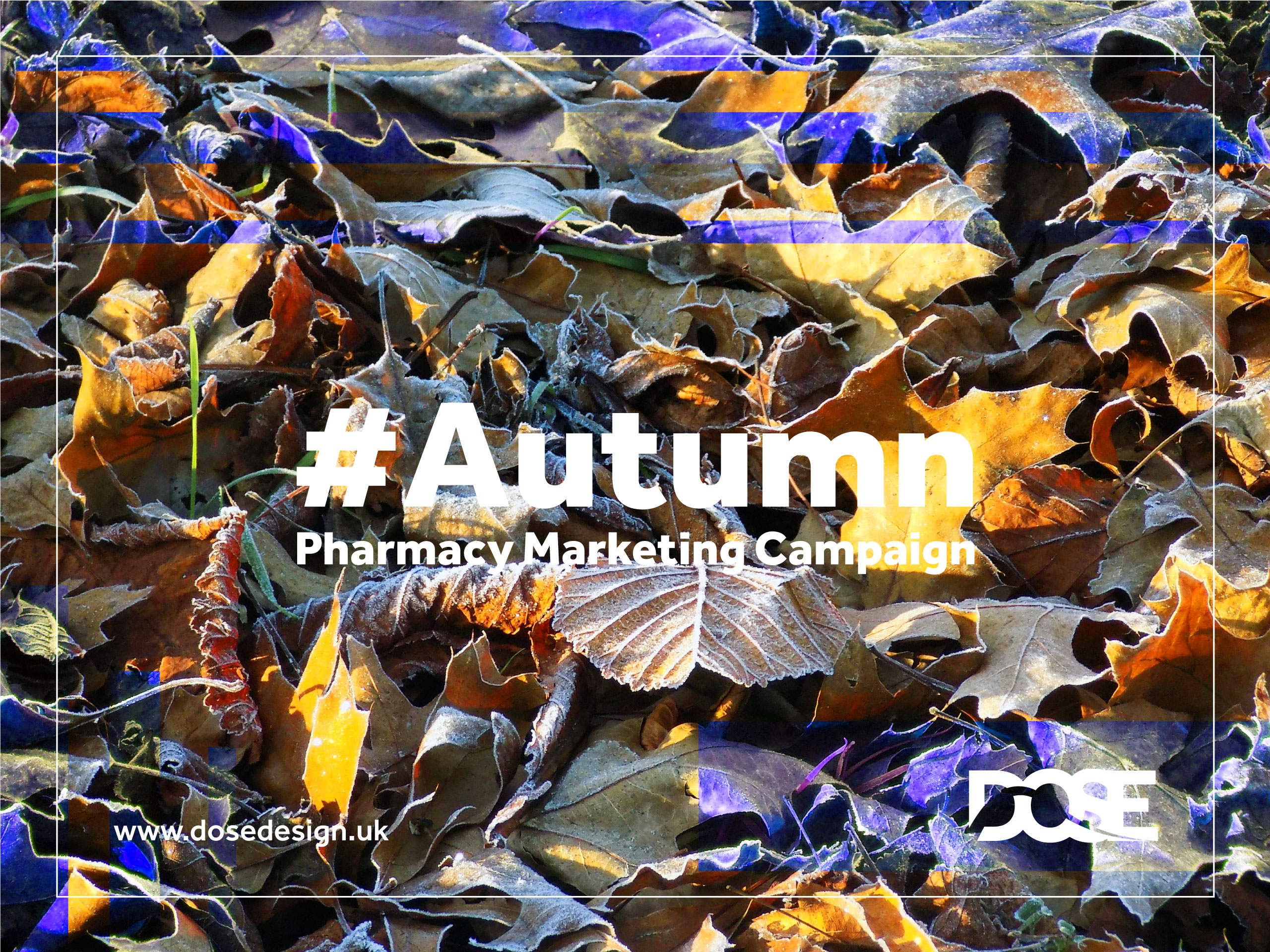 DOSE Design and Marketing Autumn Pharmacy Marketing Campaign